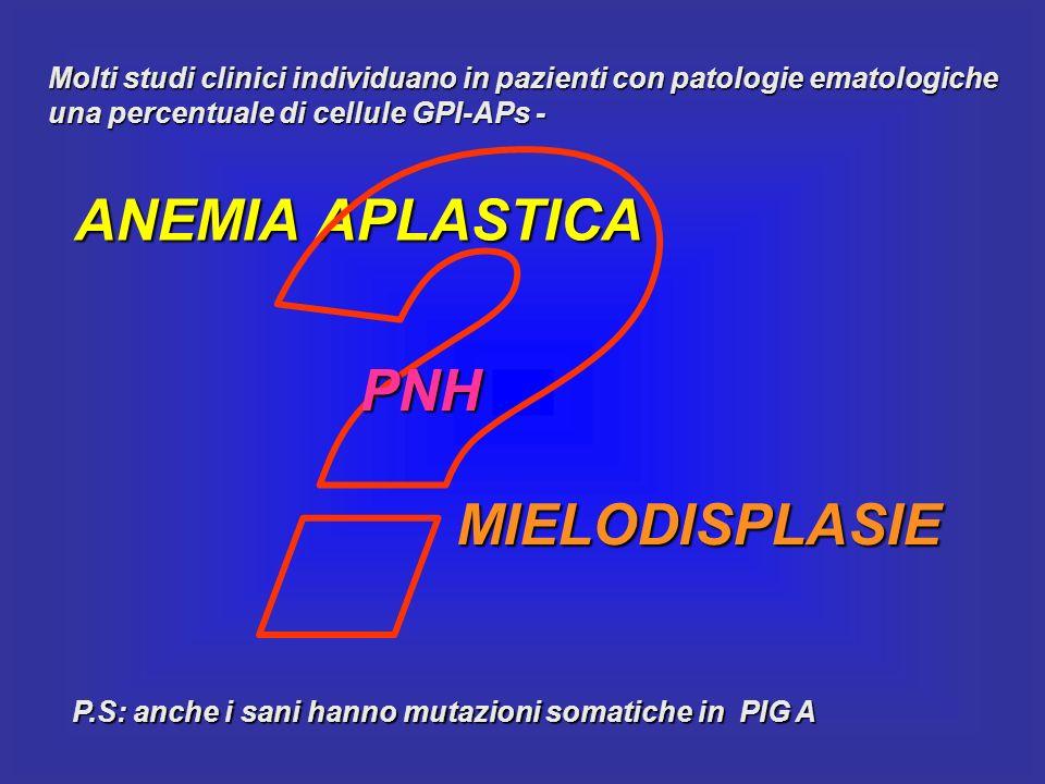 ANEMIA APLASTICA PNH MIELODISPLASIE