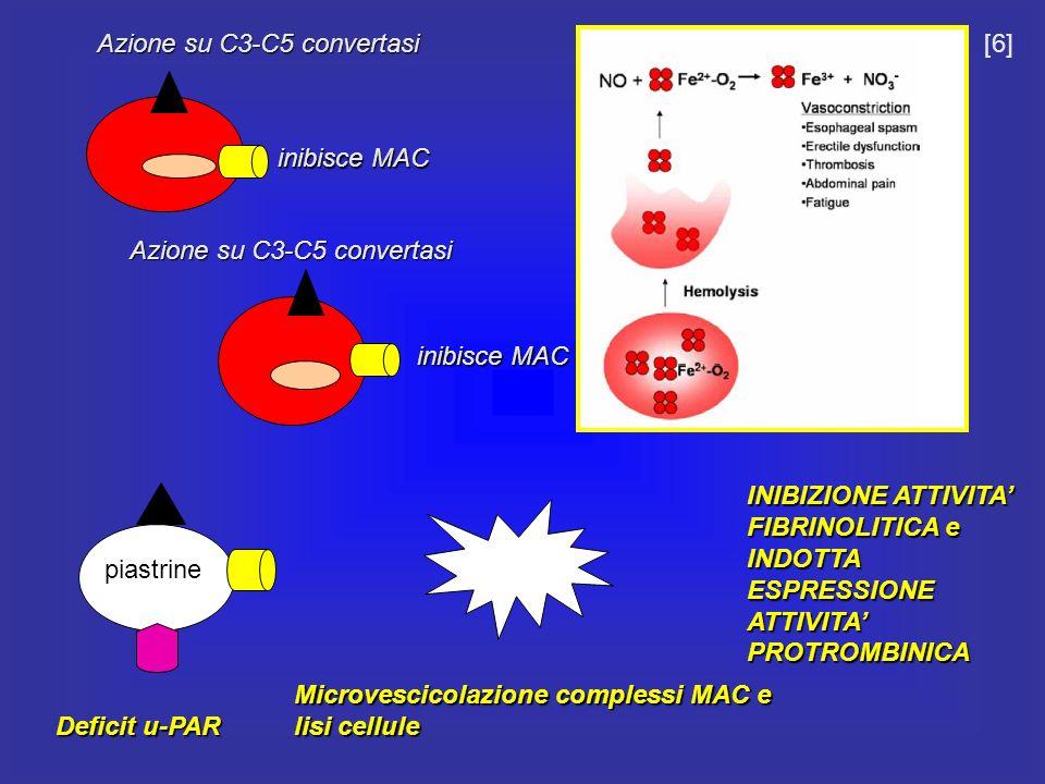 Azione su C3-C5 convertasi