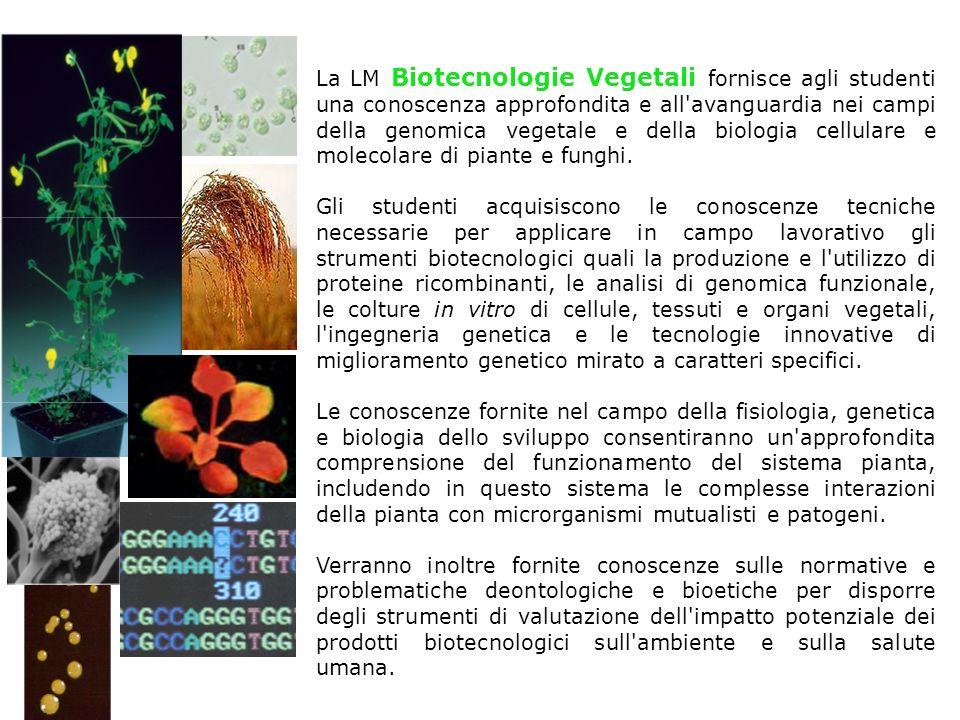 La LM Biotecnologie Vegetali fornisce agli studenti una conoscenza approfondita e all avanguardia nei campi della genomica vegetale e della biologia cellulare e molecolare di piante e funghi.