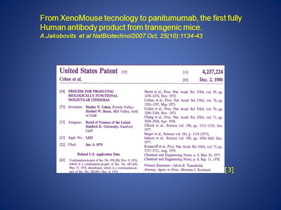 From XenoMouse tecnology to panitumumab, the first fully