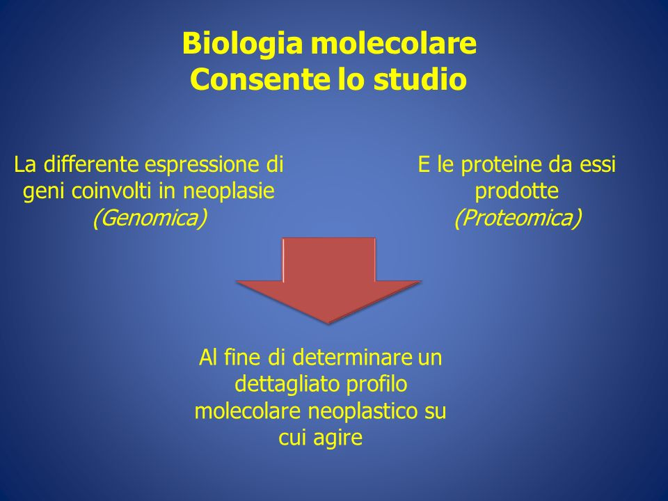 Biologia molecolare Consente lo studio