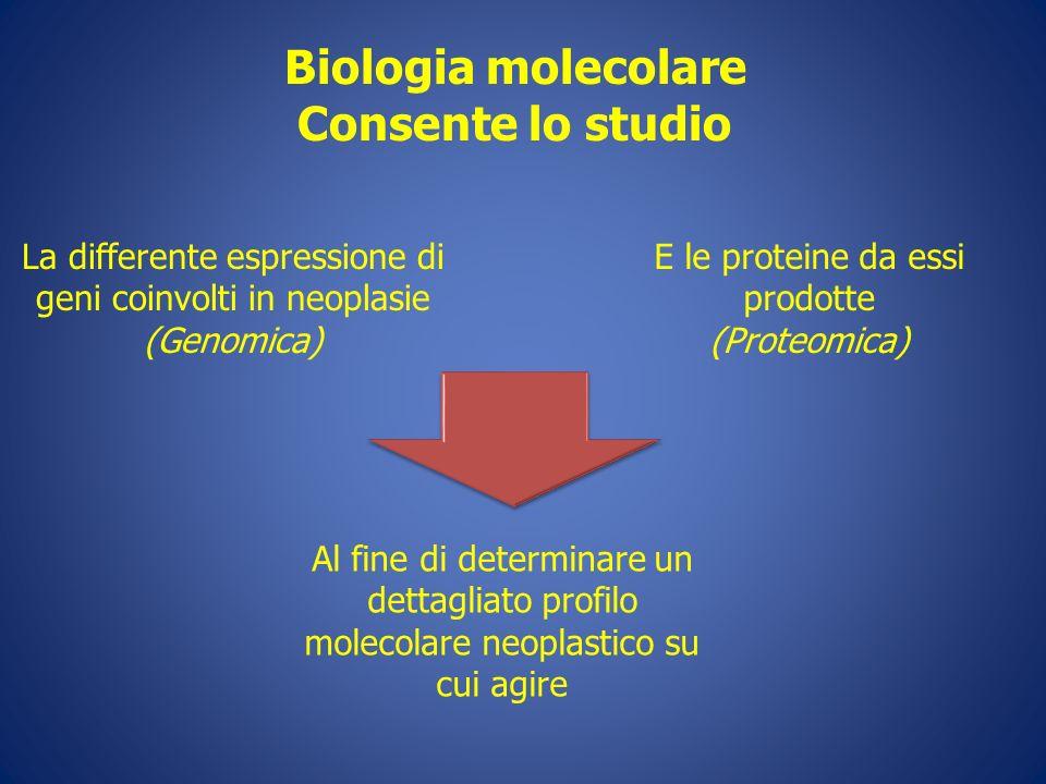 Biologia molecolare Consente lo studio