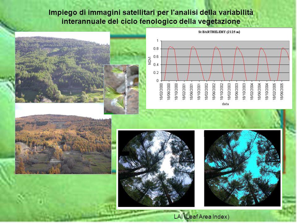 Impiego di immagini satellitari per l analisi della variabilità interannuale del ciclo fenologico della vegetazione