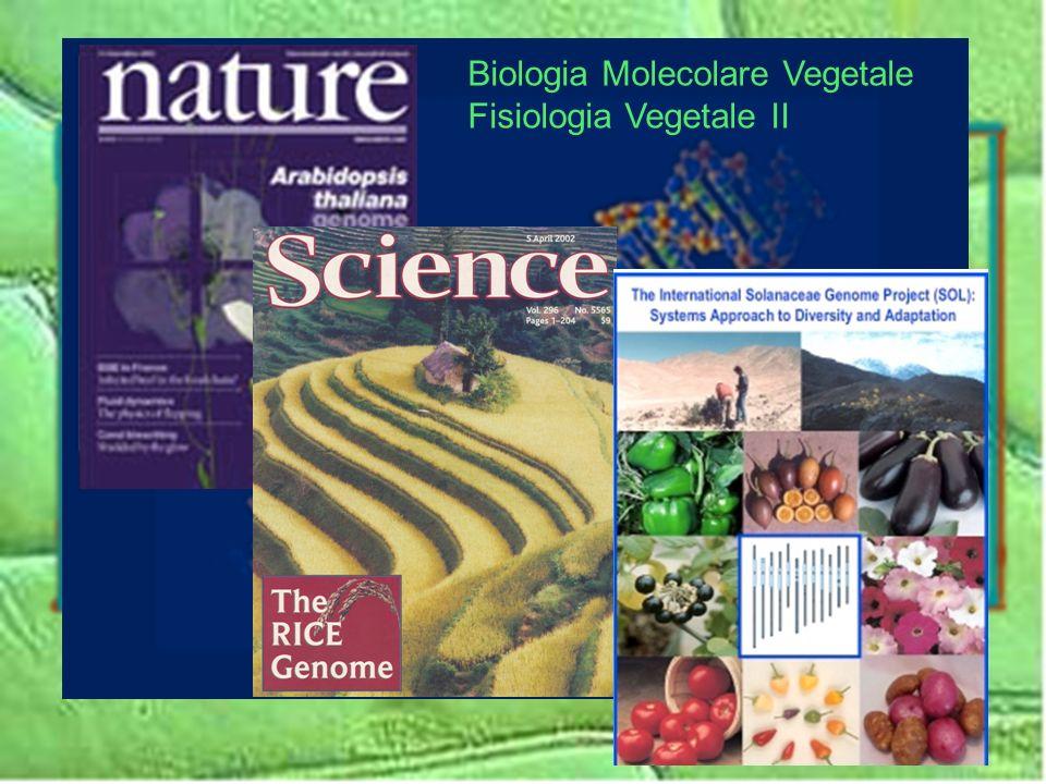 Biologia Molecolare Vegetale