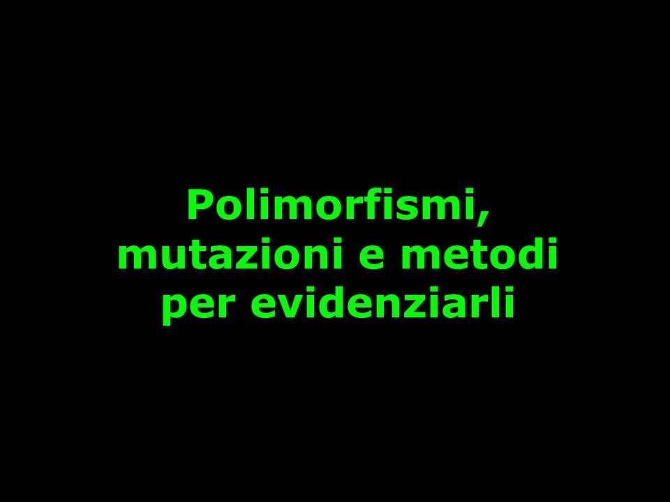Polimorfismi, mutazioni e metodi per evidenziarli