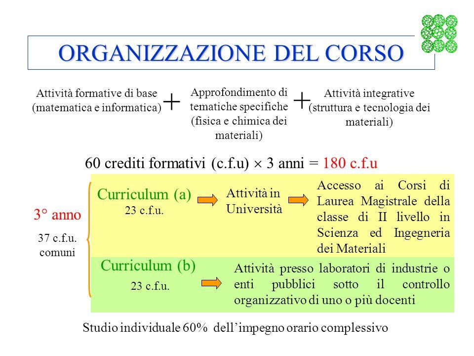 + + ORGANIZZAZIONE DEL CORSO