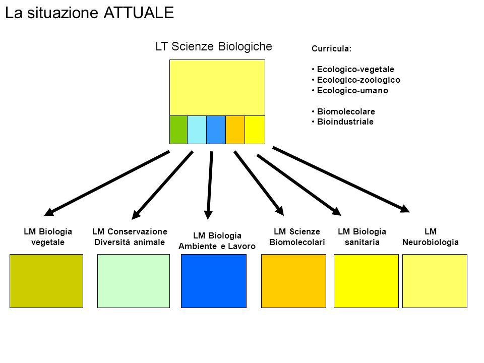La situazione ATTUALE LT Scienze Biologiche Curricula: