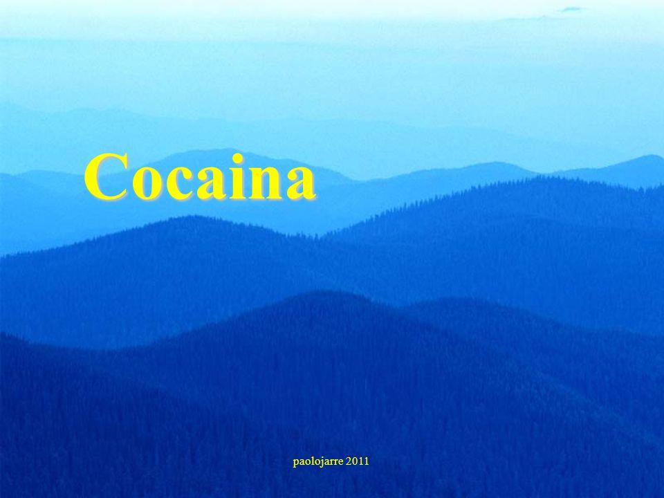 Cocaina paolojarre 2011 22