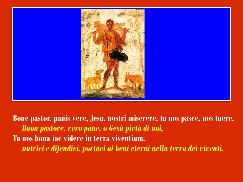 Bone pastor, panis vere, Jesu, nostri miserere, tu nos pasce, nos tuere, Buon pastore, vero pane, o Gesù pietà di noi, Tu nos bona fac videre in terra viventium.