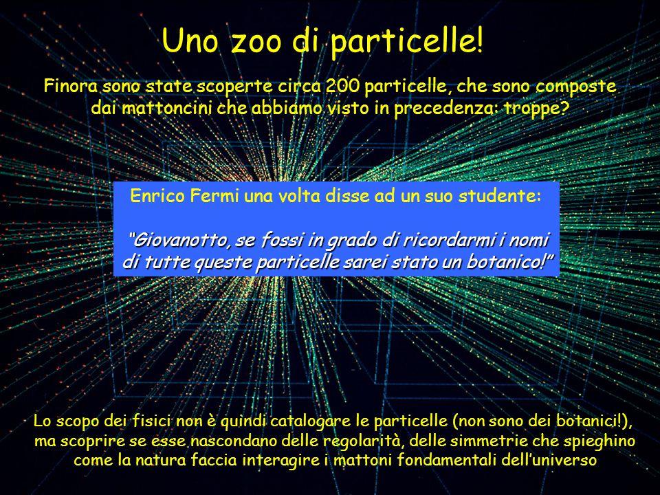 Uno zoo di particelle! Finora sono state scoperte circa 200 particelle, che sono composte dai mattoncini che abbiamo visto in precedenza: troppe