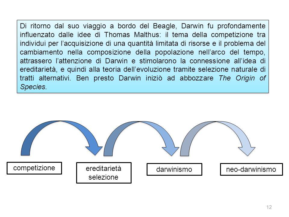 Di ritorno dal suo viaggio a bordo del Beagle, Darwin fu profondamente influenzato dalle idee di Thomas Malthus: il tema della competizione tra individui per l'acquisizione di una quantità limitata di risorse e il problema del cambiamento nella composizione della popolazione nell'arco del tempo, attrassero l'attenzione di Darwin e stimolarono la connessione all'idea di ereditarietà, e quindi alla teoria dell'evoluzione tramite selezione naturale di tratti alternativi. Ben presto Darwin iniziò ad abbozzare The Origin of Species.