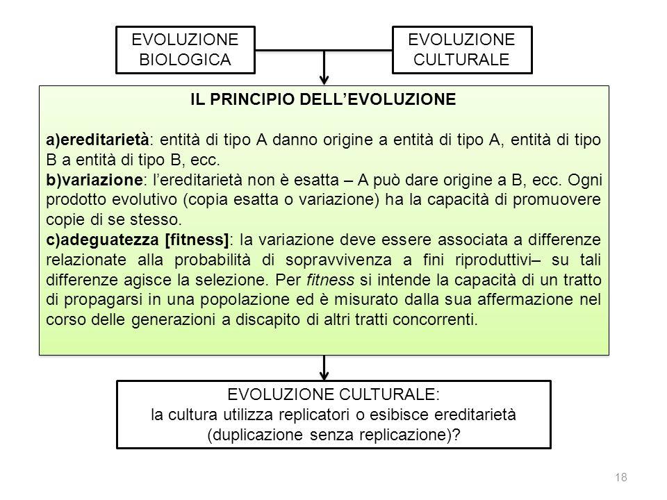 IL PRINCIPIO DELL'EVOLUZIONE