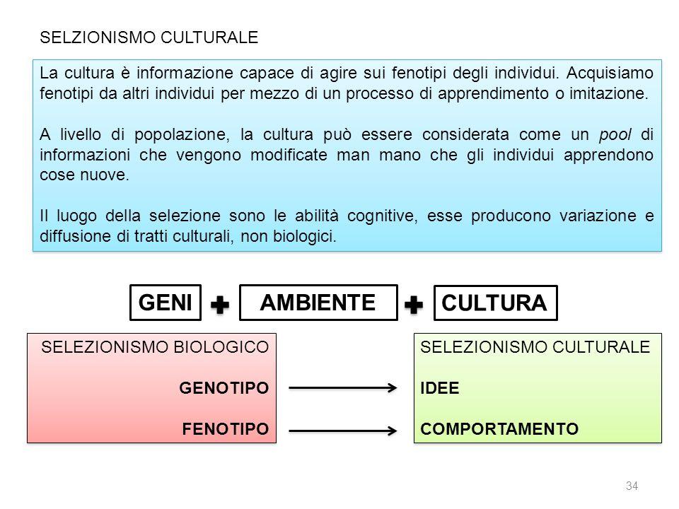 GENI AMBIENTE CULTURA SELZIONISMO CULTURALE