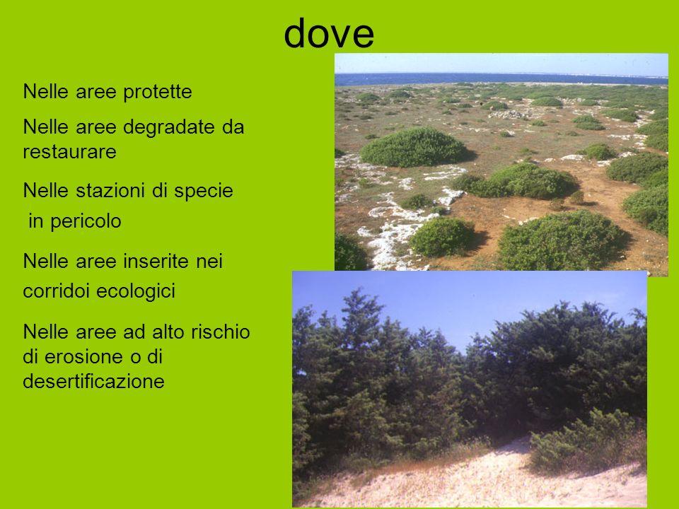 dove Nelle aree protette Nelle aree degradate da restaurare