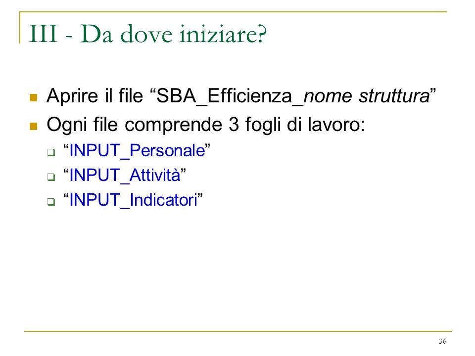 III - Da dove iniziare Aprire il file SBA_Efficienza_nome struttura