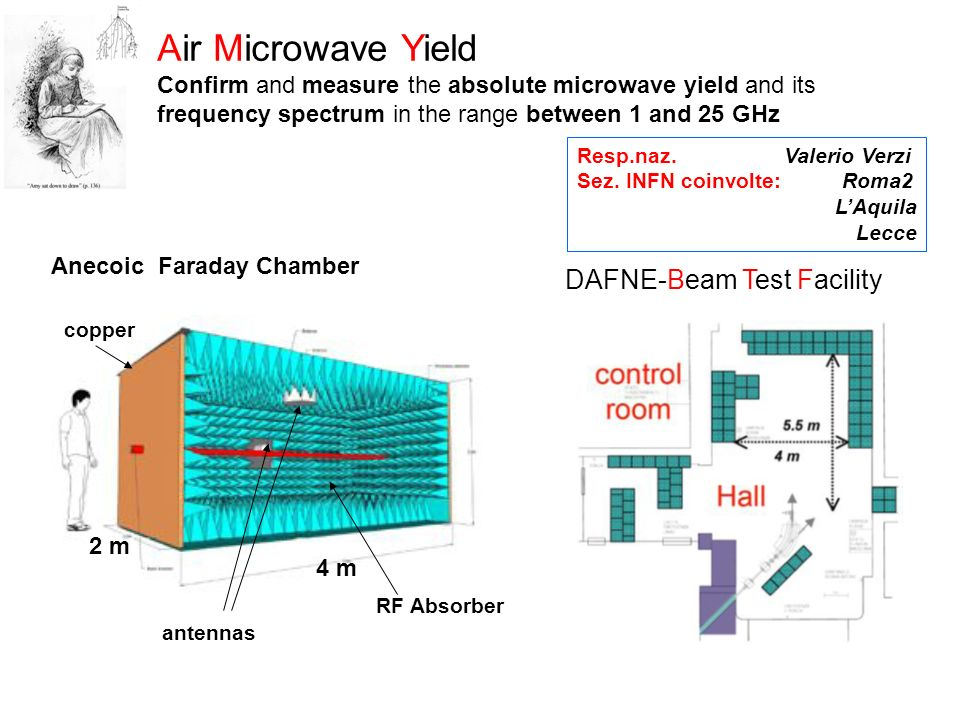 Air Microwave Yield DAFNE-Beam Test Facility