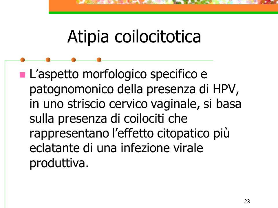 Atipia coilocitotica