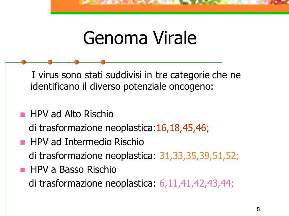 Genoma Virale I virus sono stati suddivisi in tre categorie che ne identificano il diverso potenziale oncogeno: