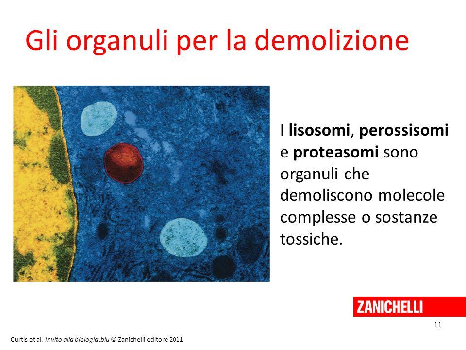Gli organuli per la demolizione