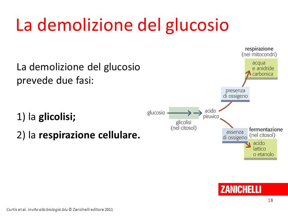 La demolizione del glucosio