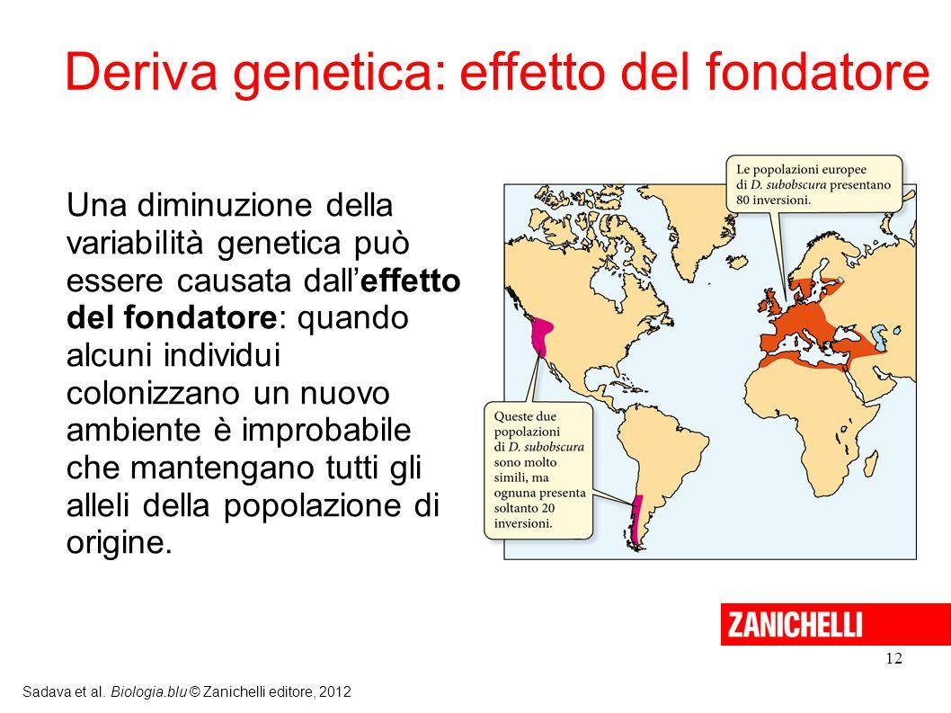 Deriva genetica: effetto del fondatore