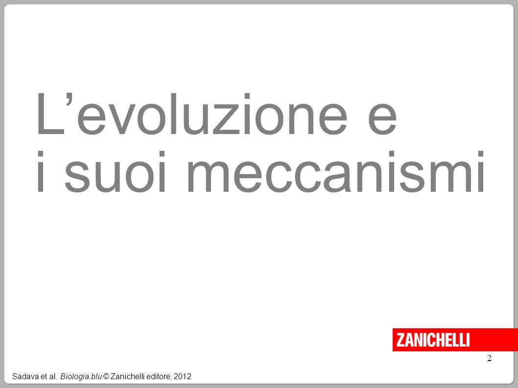 L'evoluzione e i suoi meccanismi 2