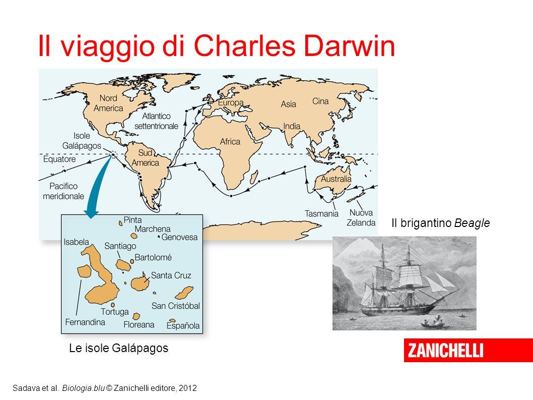 Il viaggio di Charles Darwin