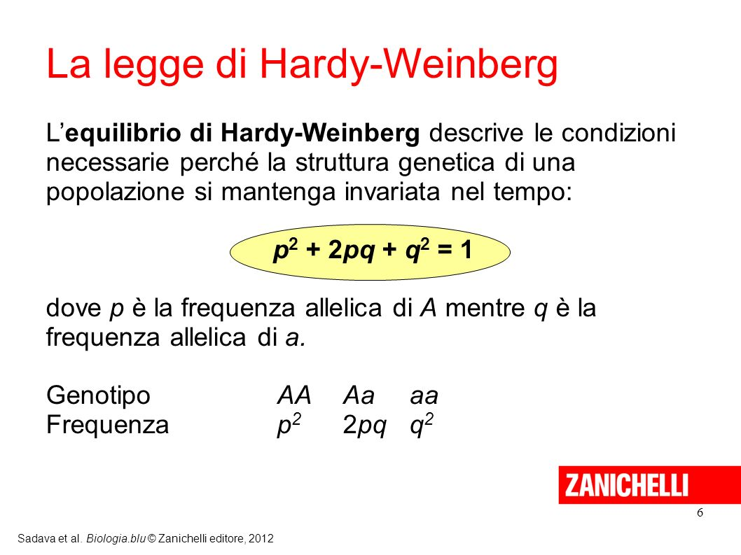 La legge di Hardy-Weinberg