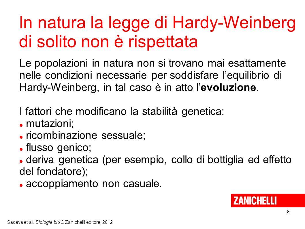 In natura la legge di Hardy-Weinberg di solito non è rispettata