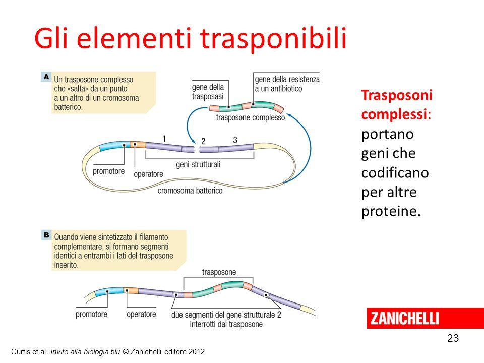 Gli elementi trasponibili