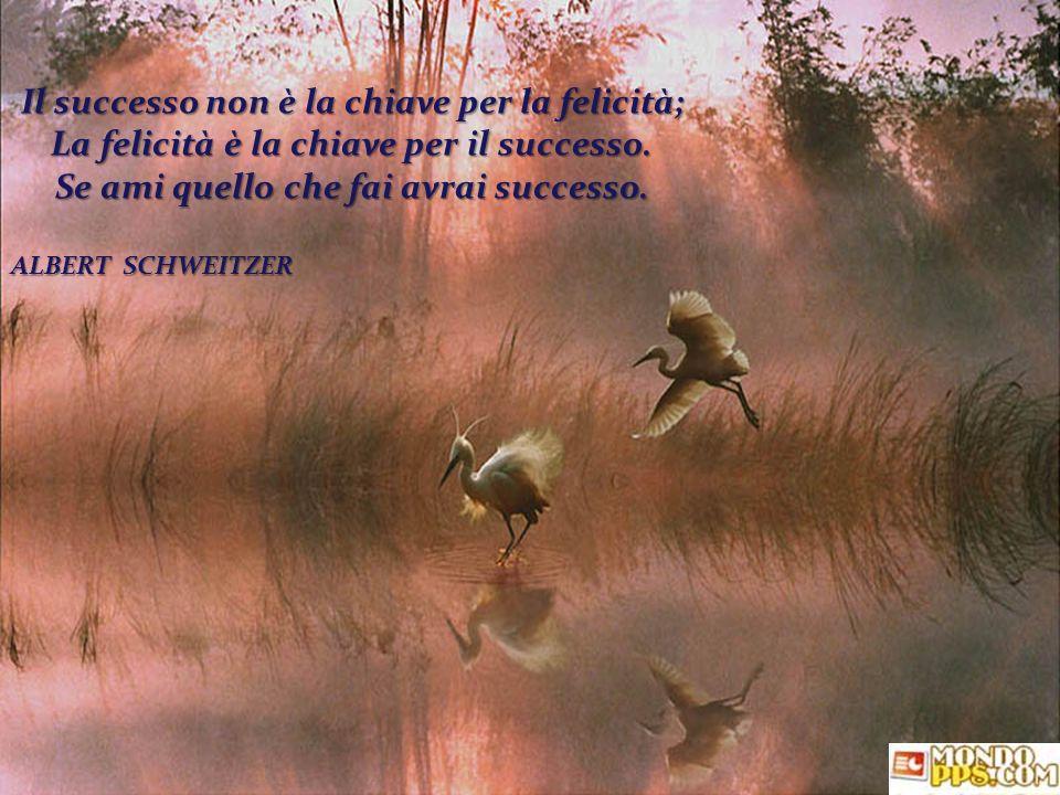 Il successo non è la chiave per la felicità;