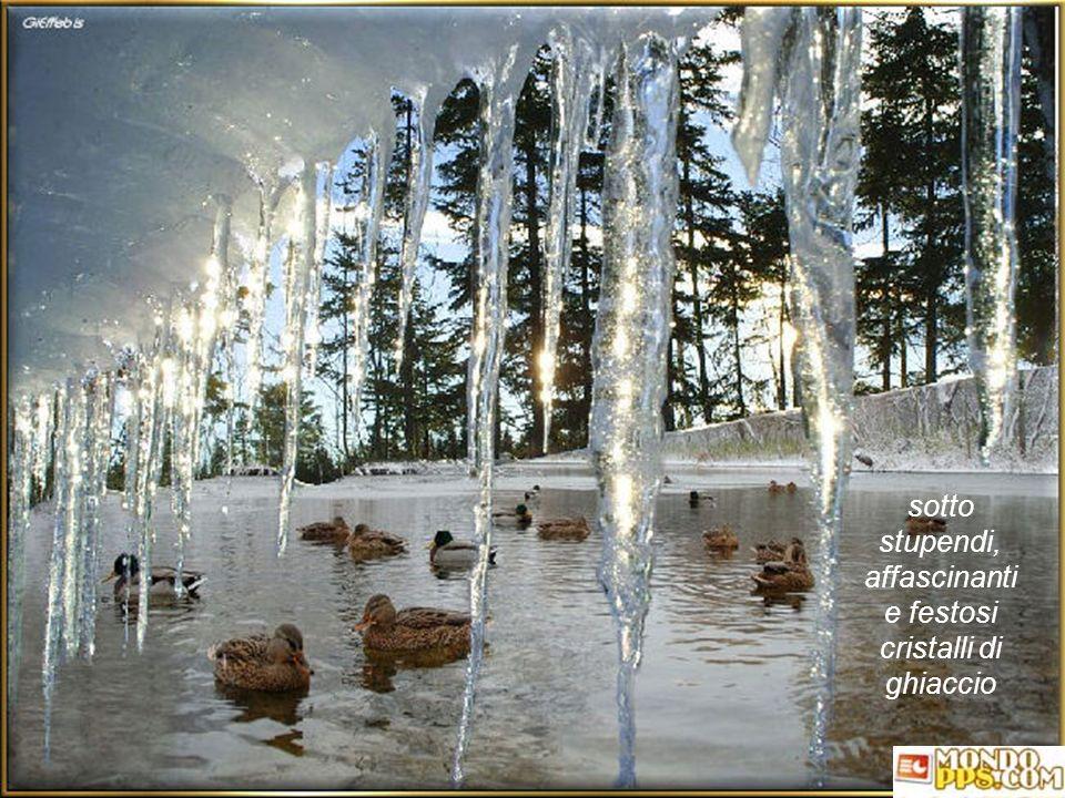 affascinanti e festosi cristalli di ghiaccio
