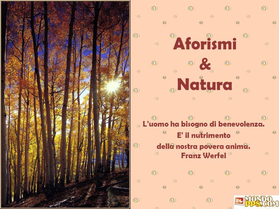 Aforismi & Natura L uomo ha bisogno di benevolenza. E il nutrimento
