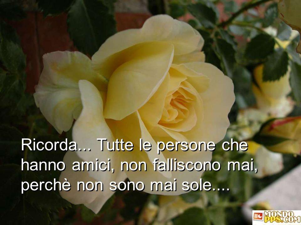 Ricorda... Tutte le persone che hanno amici, non falliscono mai, perchè non sono mai sole....