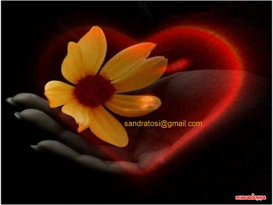 sandratosi@gmail.com