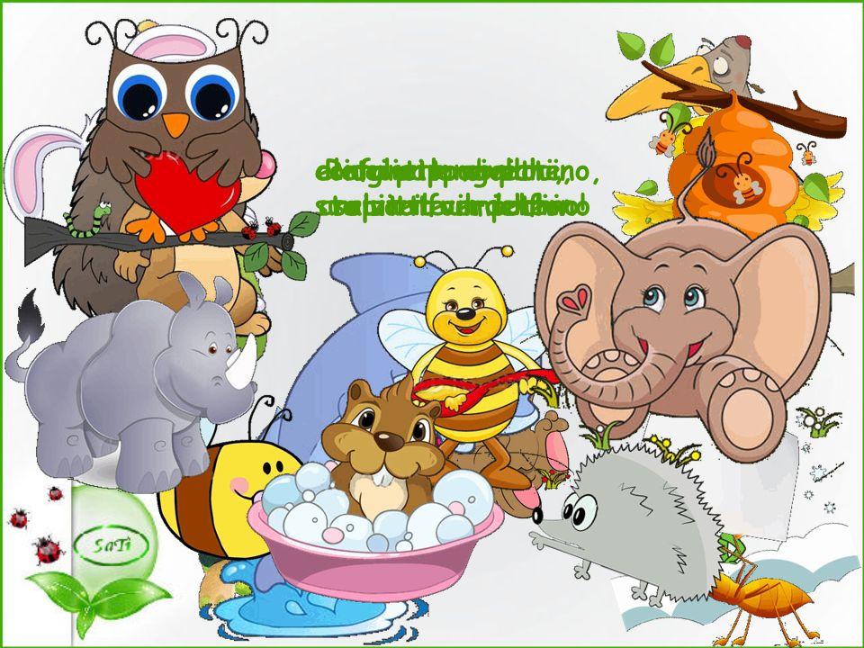 elefanti e civette, arriva il verdetto: Ricci e lombrichi, api e formiche. coniglietto e pulcino,