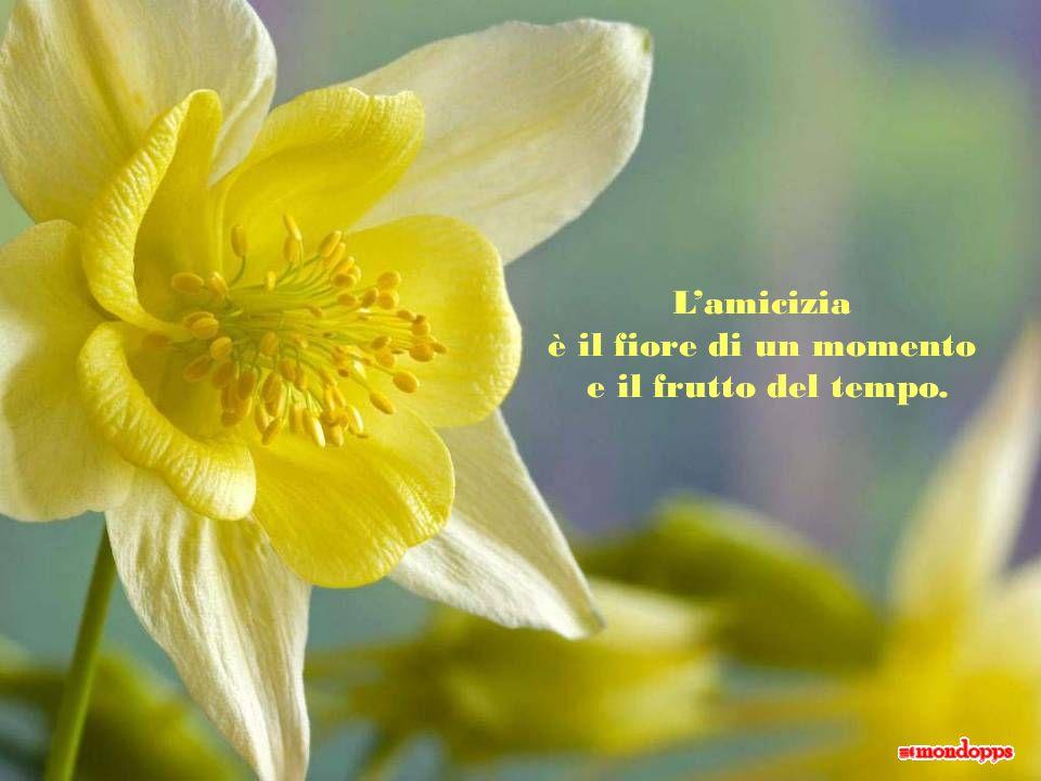 L'amicizia è il fiore di un momento e il frutto del tempo.