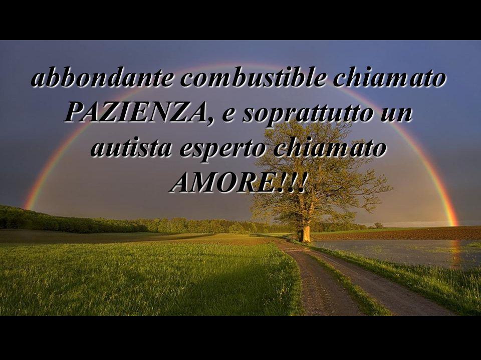 abbondante combustible chiamato PAZIENZA, e soprattutto un autista esperto chiamato AMORE!!!