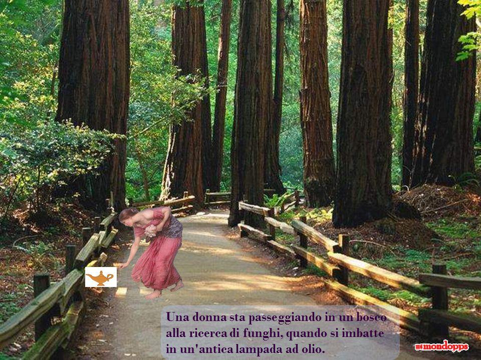 Una donna sta passeggiando in un bosco alla ricerca di funghi, quando si imbatte in un antica lampada ad olio.