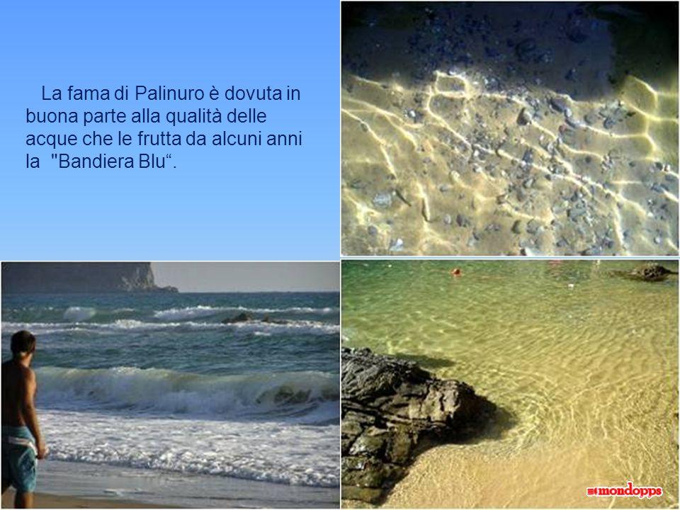 La fama di Palinuro è dovuta in buona parte alla qualità delle acque che le frutta da alcuni anni la Bandiera Blu .