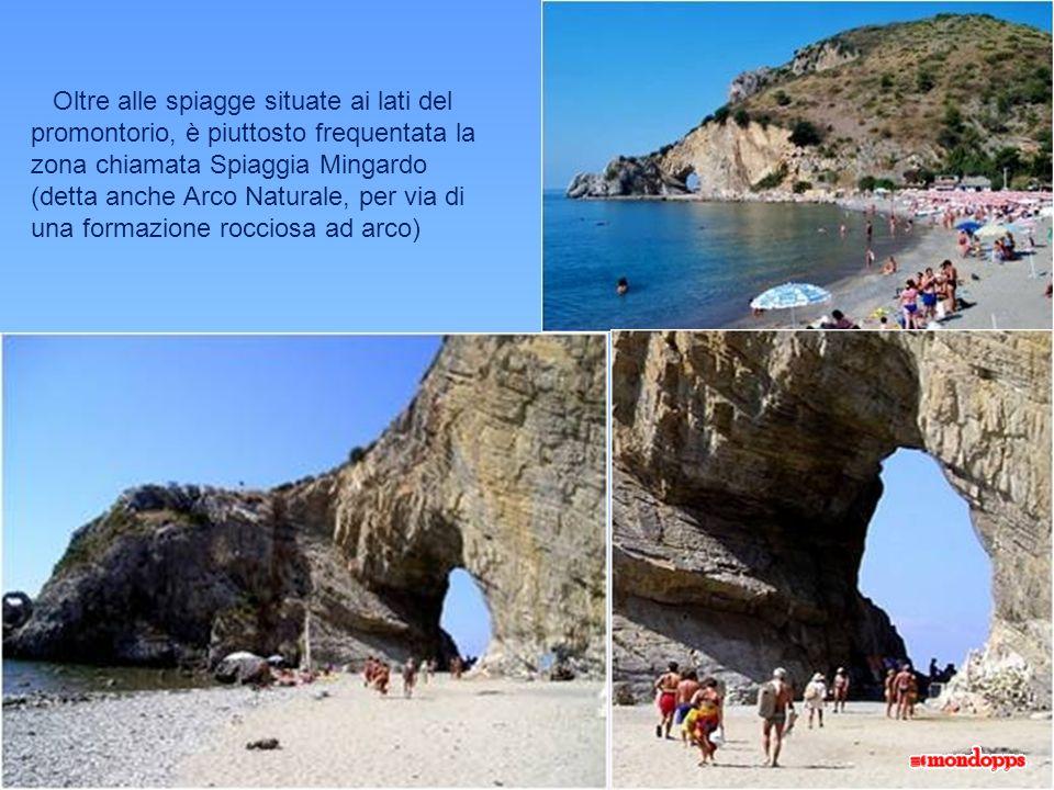 Oltre alle spiagge situate ai lati del promontorio, è piuttosto frequentata la zona chiamata Spiaggia Mingardo (detta anche Arco Naturale, per via di una formazione rocciosa ad arco)