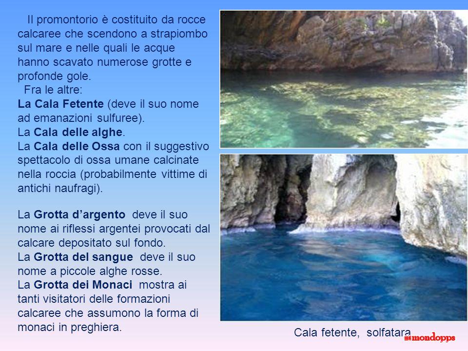 Il promontorio è costituito da rocce calcaree che scendono a strapiombo sul mare e nelle quali le acque hanno scavato numerose grotte e profonde gole.