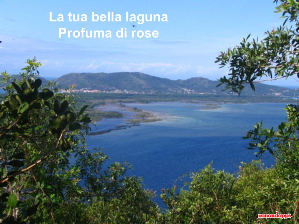 La tua bella laguna Profuma di rose