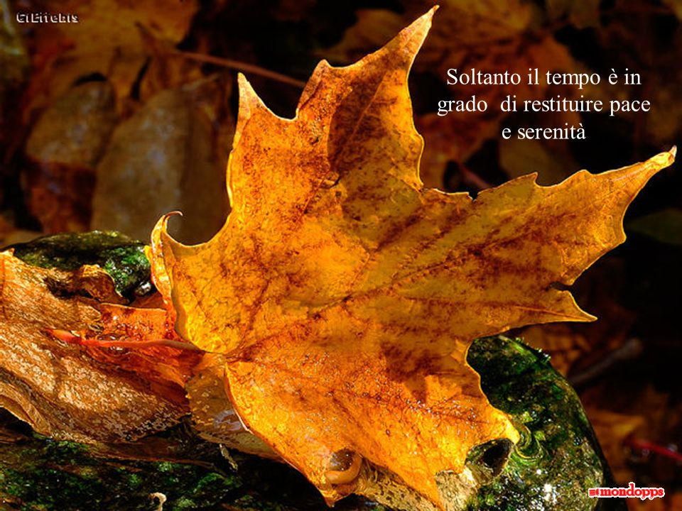 Soltanto il tempo è in grado di restituire pace e serenità