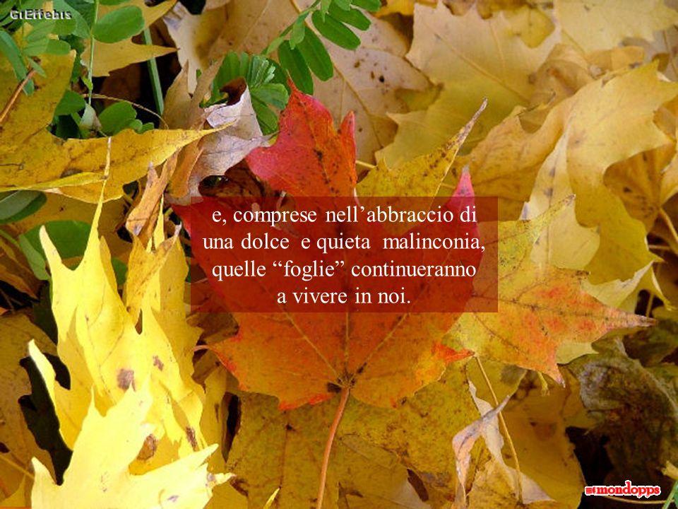 e, comprese nell'abbraccio di una dolce e quieta malinconia, quelle foglie continueranno