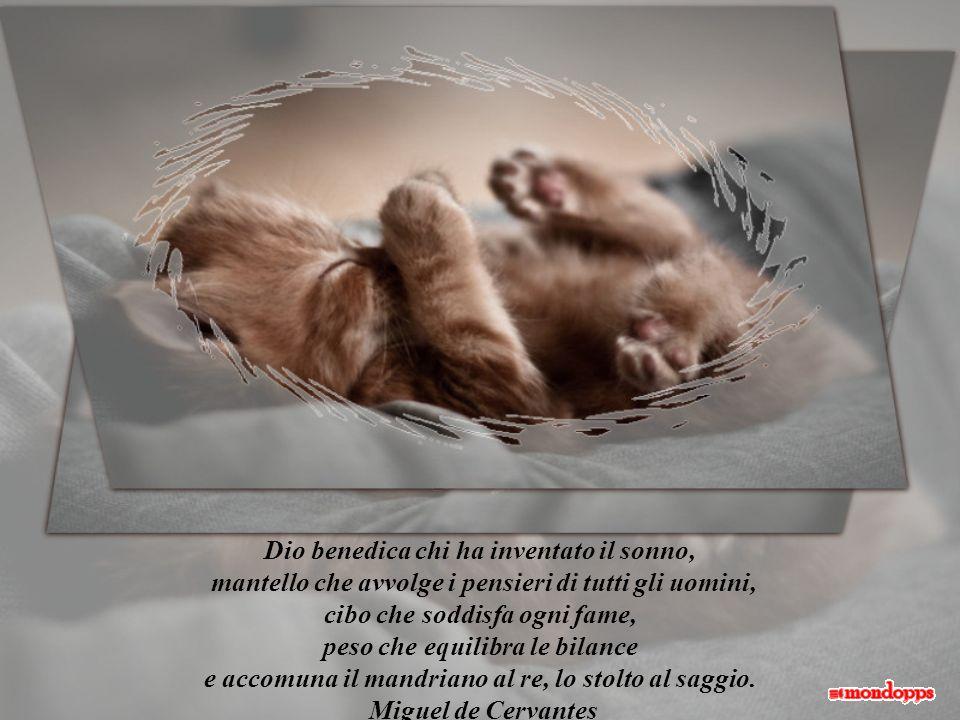 Dio benedica chi ha inventato il sonno,