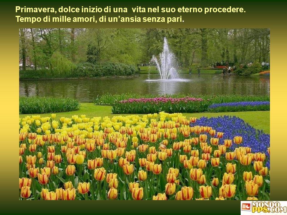 Primavera, dolce inizio di una vita nel suo eterno procedere