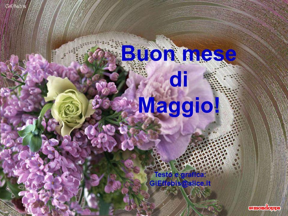 Buon mese di Maggio! Testo e grafica: GiEffebis@alice.it