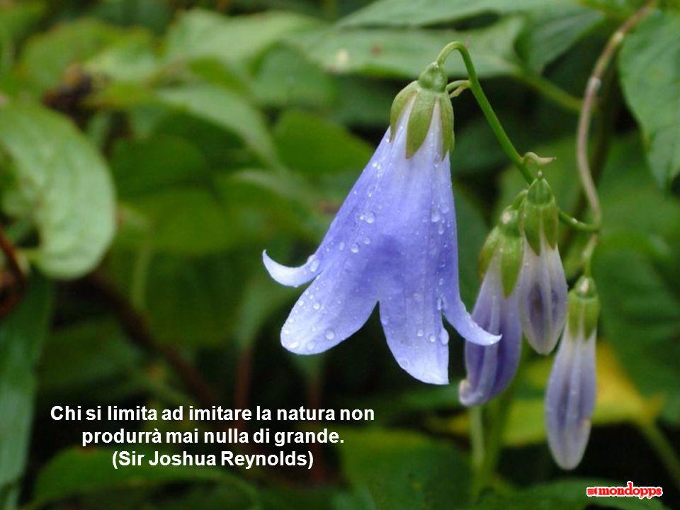 Chi si limita ad imitare la natura non produrrà mai nulla di grande
