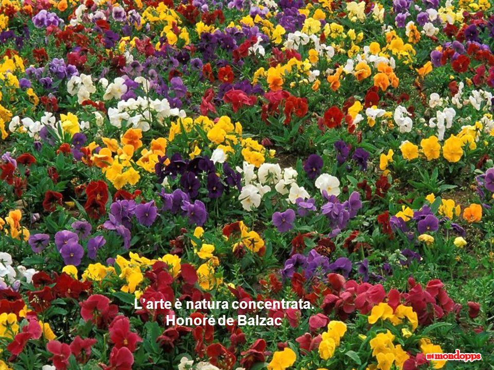 L'arte è natura concentrata. Honoré de Balzac